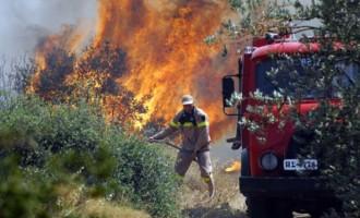 Ανίκανη (;) να σβήσει τις φωτιές η Αλβανία: Νέα βοήθεια στέλνει η Ελλάδα