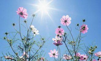 Καιρός: Ηλιοφάνεια και άνοδος θερμοκρασίας τη Μ. Τετάρτη