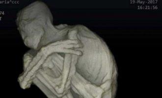 """Σπάνιο εύρημα: Βρέθηκε """"εξωγήινη"""" μούμια με τρία δάκτυλα στο Περού (βίντεο)"""