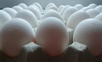 Συλλήψεις για το σκάνδαλο με τα μολυσμένα αυγά στην ΕΕ – Στο στόχαστρο η Ολλανδία