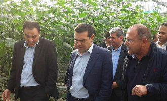 Με όπλο το μέρισμα για τη δίκαιη ανάπτυξη στη Θράκη ο Τσίπρας