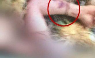 Ανατροπή: Φωτογραφία αποκαλύπτει σημάδια στα χέρια του άτυχου φοιτητή στην Κάλυμνο (φωτο)
