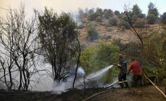 Ελεγχόμενη η φωτιά στην Εύβοια – Χωρίς ενεργά μέτωπα