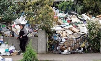 """Ελληνίδα του Σίδνεϊ """"διάσημη"""" στην Αυστραλία για το βουνό από σκουπίδια στην αυλή της"""