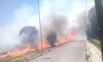 Κοζάνη: Στις αυλές των σπιτιών η πυρκαγιά (βίντεο)