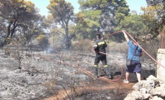 Σε απόσταση αναπνοής από τα σπίτια πυρκαγιά στα Χανιά