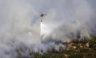 Ένας νεκρός σε δασική πυρκαγιά στην… Σουηδία – Η είδηση είναι αληθινή (βίντεο)