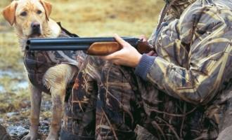 Στις 20 Αυγούστου ξεκινά η κυνηγετική περίοδος – Όλα όσα πρέπει να ξέρετε