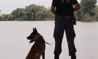 Συνελήφθησαν στον Έβρο δύο Γερμανοί δημοσιογράφοι ενώ κινούνταν σε στρατιωτική περιοχή