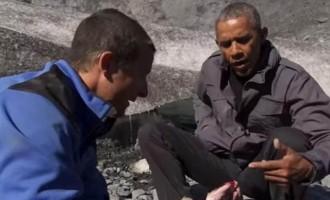 Ο Ομπάμα τρώει τα αποφάγια μιας αρκούδας στην Αλάσκα (βίντεο)