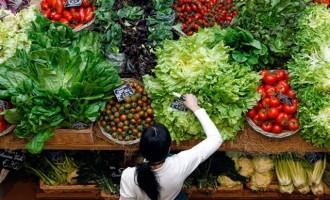Συναγερμός στον Έβρο: Κατασχέθηκαν 400 τόνοι με τρόφιμα-δηλητήρια από την Τουρκία