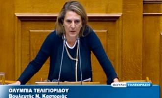 Σκληρή ατάκα Τελιγιορίδου: Θα αλλάζουμε τη χώρα και εσείς αρχηγούς