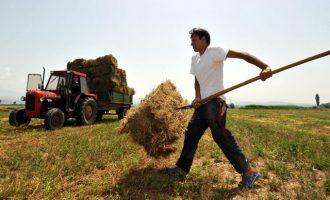 Πώς μπορούν οι αγρότες να ρυθμίσουν «κόκκινα» δάνεια με κούρεμα ως 60%