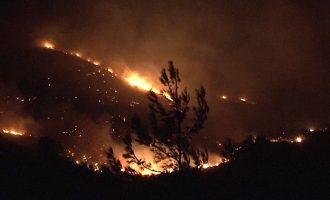 Καίγονται τα Κύθηρα: Ανεξέλεγκτη η φωτιά απειλεί σπίτια – Εκκενώθηκε οικισμός