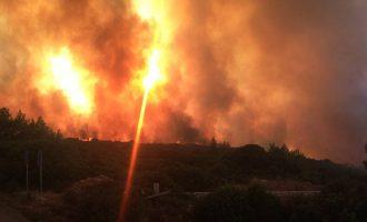 Παρέμβαση Τσίπρα για την καταστροφική φωτιά στα Κύθηρα – Αποχωρούν τα αεροσκάφη