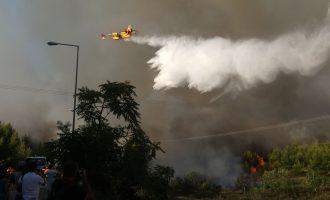 """Σύσκεψη Τόσκα-Τζανακόπουλου: """"Την Τετάρτη θα κάνουμε την τελική επίθεση στις πυρκαγιές"""""""