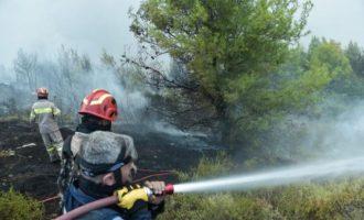 Μάχη με τις φλόγες σε πολλαπλά μέτωπα – Πού υπάρχουν φωτιές