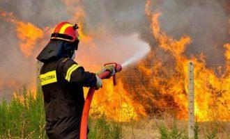 Σε ετοιμότητα η Πυροσβεστική λόγω κινδύνου εκδήλωσης πυρκαγιάς