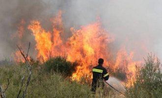 Υψηλός την Παρασκευή ο κίνδυνος πυρκαγιών