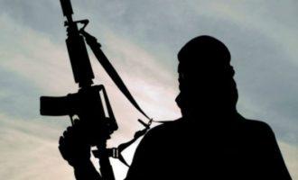Τι λένε οι ελληνικές Αρχές για τον τζιχαντιστή του ISIS που συνελήφθη στην Αλεξανδρούπολη
