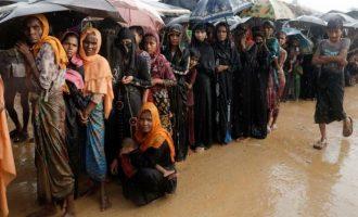 Κοπάδι από άγριους ελέφαντες ποδοπάτησε μουσουλμάνους πρόσφυγες Ροχίνγκια