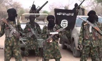 Η κυβέρνηση της Νιγηρίας διαπραγματεύεται εκεχειρία με την τζιχαντιστική Μπόκο Χαράμ