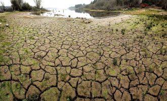 SOS για την ξηρασία στην Ελλάδα – Τι προειδοποιούν  επιστήμονες
