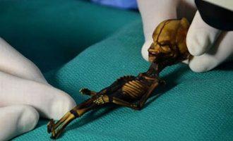 Η επιστήμη έλυσε το μυστήριο του μικροσκοπικού «εξωγήινου Άτα» – Ο σκελετός είναι αληθινός, αλλά…