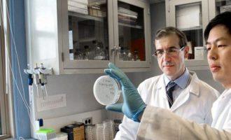 Ο γιατρός Ελευθέριος Μυλωνάκης ανακάλυψε αντιβιοτικά που καταστρέφουν το θανατηφόρο μικρόβιο MRSA
