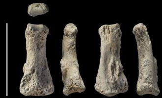 Ανακαλύφθηκε στη Σ. Αραβία απολίθωμα του Homo sapiens ηλικίας 90.000 ετών