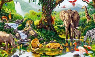 Ο άνθρωπος εξαφάνισε το 83% των άγριων θηλαστικών και το 80% των θαλάσσιων ζώων