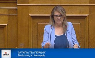 Τελιγιορίδου στη Βουλή: Μόνο ο Ερντογάν και η ΝΔ δεν χαιρέτησαν τη συμφωνία με τα Σκόπια (βίντεο)