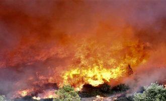 Πυρκαγιά σε δασική έκταση στο Πέραμα Αττικής κοντά σε οικισμό
