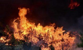 Σε εξέλιξη «διπλή» πυρκαγιά στην Ηλεία