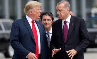 New York Times: Η «ύποπτη» σχέση των γαμπρών Ερντογάν και Τραμπ