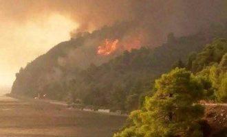 58 δασικές πυρκαγιές το τελευταίο 24ωρο στην Ελλάδα