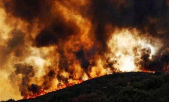 Πολύ υψηλός ο κίνδυνος πυρκαγιάς την Κυριακή – Ποιες περιοχές απειλούνται