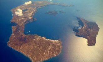 Σαντορίνη: Νέα στοιχεία για την αρχαία έκρηξη του ηφαιστείου – Τι αποκαλύπτει μια προϊστορική ελιά