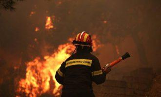 Τραυματίστηκαν δύο πυροσβέστες σε φωτιά στη Μάνη