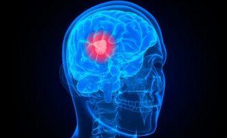 Ελληνίδα ερευνήτρια έκανε σημαντική ανακάλυψη για τη «συνείδηση» στον εγκέφαλο