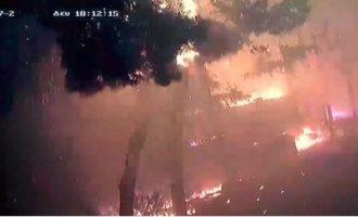 Τι κατέθεσαν στον ανακριτή Τόσκας, Γεροβασίλη, Σκουρλέτης για τη φωτιά στο Μάτι