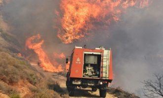 Καίγονται Εύβοια, Βοιωτία, Θάσος, Ιωάννινα και Άρτα – Μάχες δίνουν οι Πυροσβέστες
