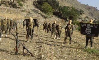 Σκοτώθηκαν δύο ηγέτες της οργάνωσης Ισλαμικό Κράτος στο Αφγανιστάν