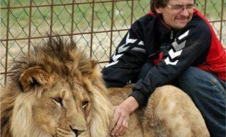 34χρονος κατασπαράχτηκε από λιοντάρια που είχε στην αυλή του