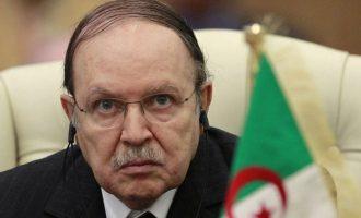 Αποπομπή του προέδρου της Αλγερίας ζητεί ο αρχηγός τoυ Στρατού