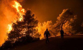 Συναγερμός στη Ζάκυνθο: Η φωτιά απειλεί το χωριό Κερί