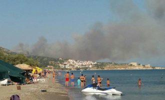 Συναγερμός: Φωτιά στη Σάμο – Εκκενώθηκαν ξενοδοχεία