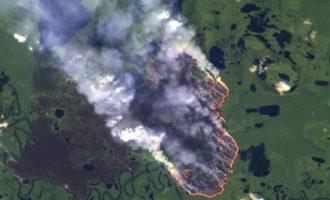 Θα ξεμείνουμε από οξυγόνο; Ο Αμαζόνιος στις φλόγες και ο Μπολσονάρου στον… κόσμο του
