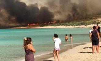 Εκκενώνεται η Ελαφόνησος από τους επισκέπτες – Η πυρκαγιά αναζωπυρώθηκε