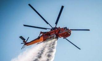 Φωτιά στον Μαραθώνα – Δίνει μάχη η Πυροσβεστική